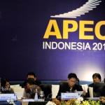 Agenda APEC Hanya Mementingkan Negara Maju
