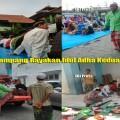 Muslim Syiah Sampang Rayakan Idul Adha