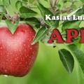 Kasiat-luar-biasa-apel