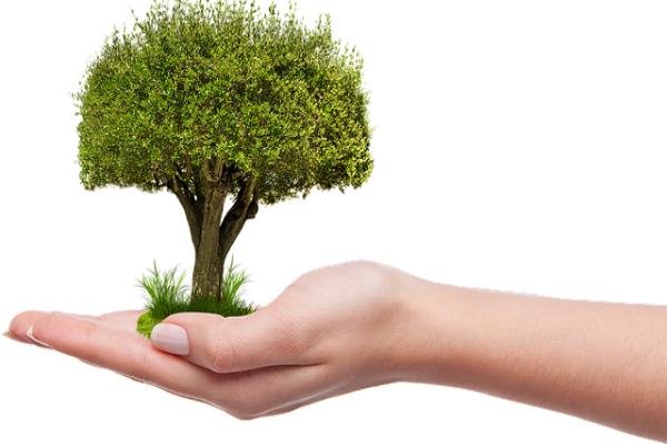 Jaga Lingkungan, Pemkot Tangerang Canangkan Gerakan Sedekah Oksigen