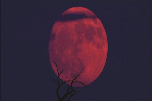 Lembaga Falak ABI: Gerhana Super Blue Moon 31 Januari 2018
