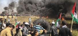 Puluhan Warga Palestina Gugur Jelang Peringatan Nakba
