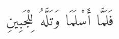 Ibrahim11