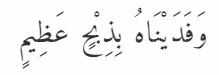 Ibrahim14