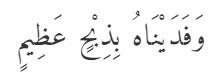 Ibrahim4