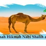 Kisah Hikmah Nabi Shalih a.s.