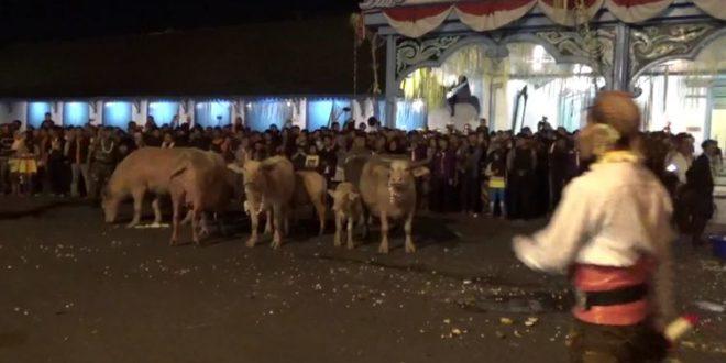 5 Tradisi Menyambut Bulan Suro di Pulau Jawa