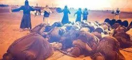 Muslim bin Ausajah, Syahid Pertama Peristiwa Karbala